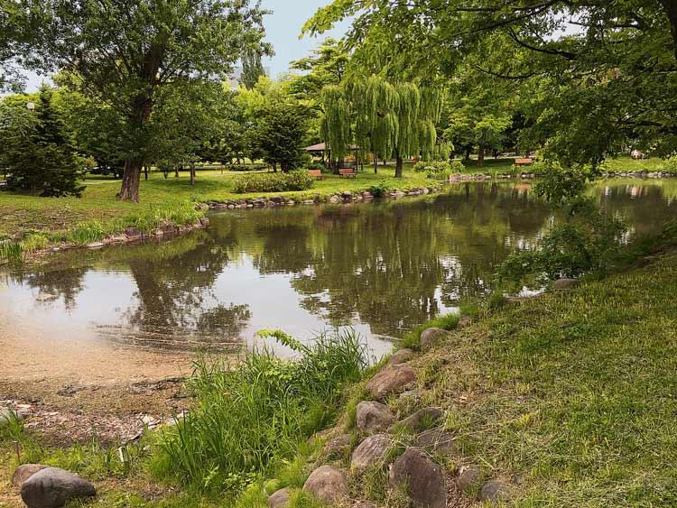 中島公園菖蒲池の写真01