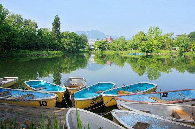 札幌市中島公園内の菖蒲池とボートの写真。