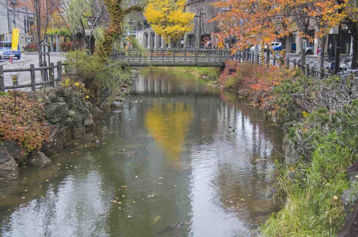札幌の鴨々川の写真。